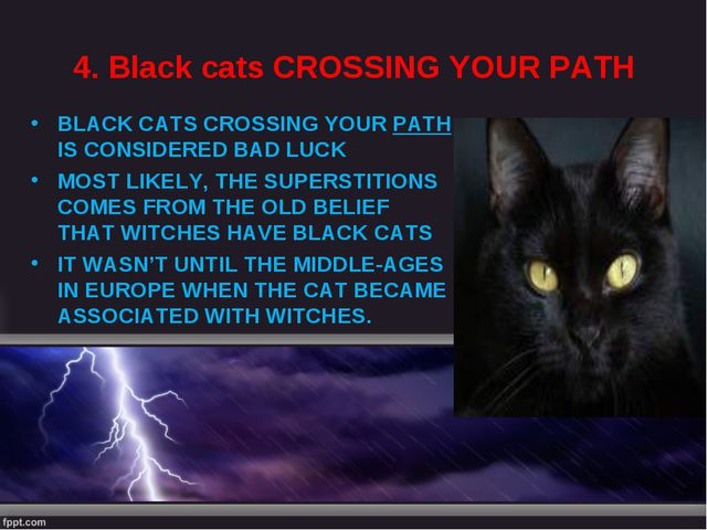 4. Black cats CROSSING YOUR PATH BLACK CATS CROSSING YOUR PATH IS CONSIDERED...