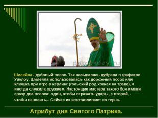 Атрибут дня Святого Патрика.  Шилейла - дубовый посох. Так называлась