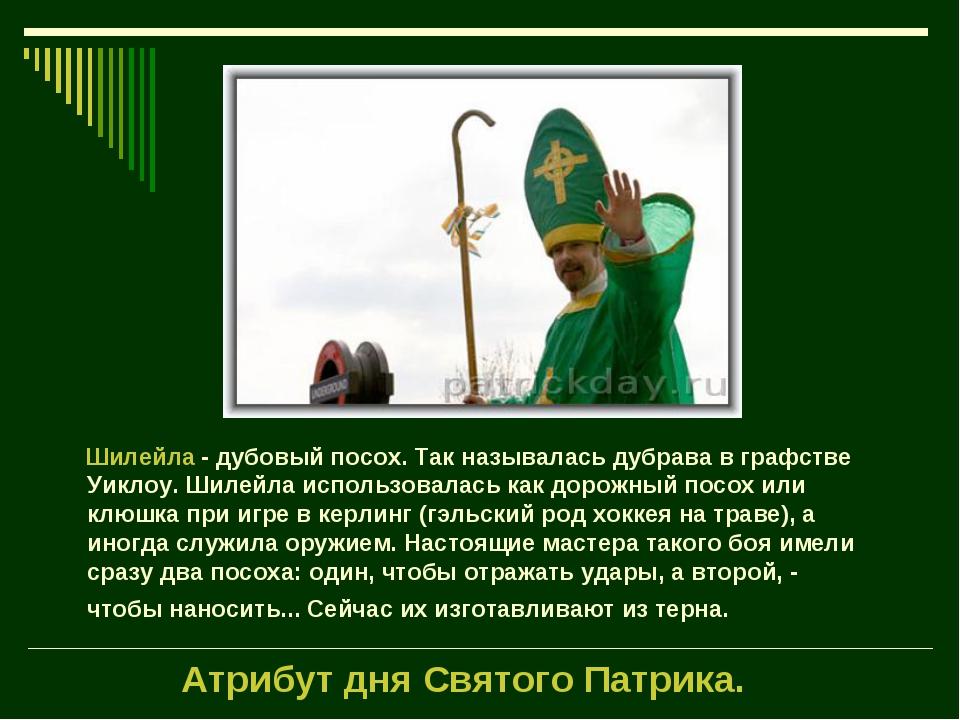 Атрибут дня Святого Патрика.  Шилейла - дубовый посох. Так называлась...