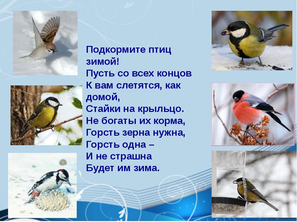 Подкормите птиц зимой! Пусть со всех концов К вам слетятся, как домой, Стайк...