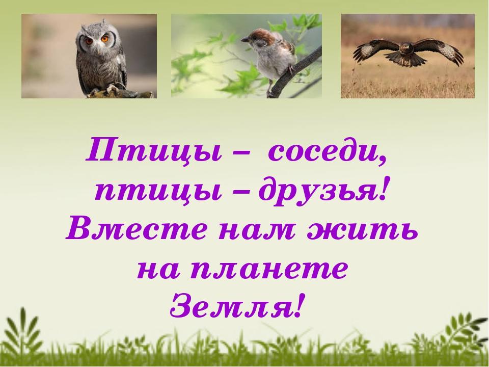 Птицы – соседи, птицы – друзья! Вместе нам жить на планете Земля!