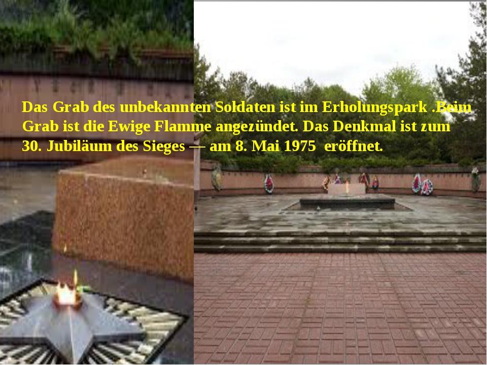 Das Grab des unbekannten Soldaten ist im Erholungspark .Beim Grab ist die Ew...