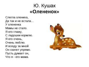 Ю. Кушак «Олененок» Слегла олениха, Да так и не встала... У олененка Мамы не