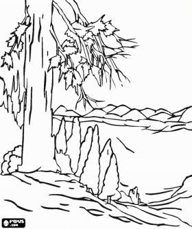Вид-сверху-с-деревьями-на_49a27009832d1-p