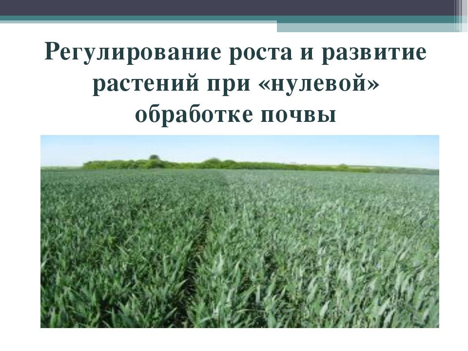Регулирование роста и развитие растений при «нулевой» обработке почвы