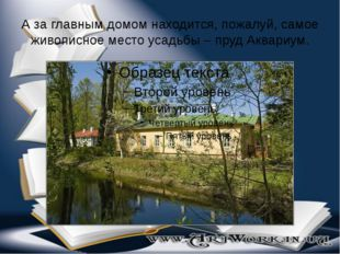 А за главным домом находится, пожалуй, самое живописное место усадьбы – пруд