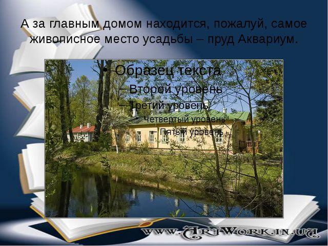 А за главным домом находится, пожалуй, самое живописное место усадьбы – пруд...