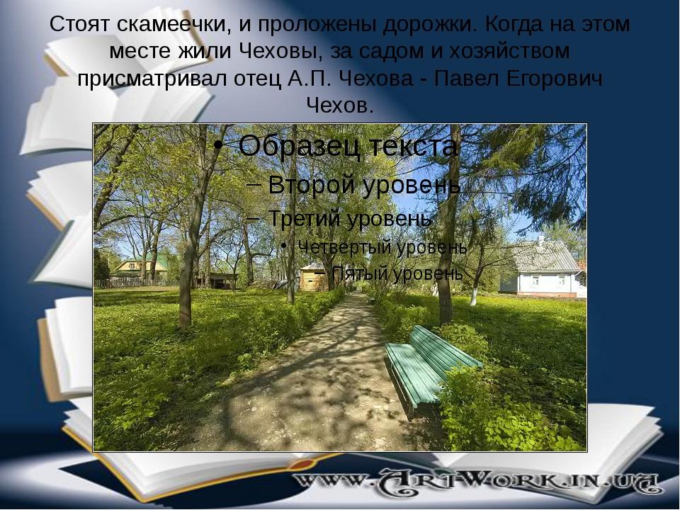 Стоят скамеечки, и проложены дорожки. Когда на этом месте жили Чеховы, за сад...