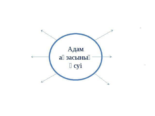 Адам ағзасының өсуі