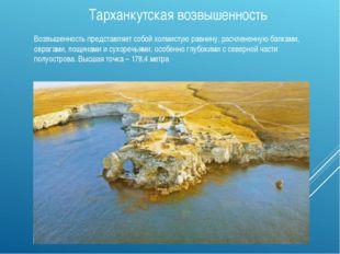 Тарханкутская возвышенность Возвышенность представляет собой холмистую равнин