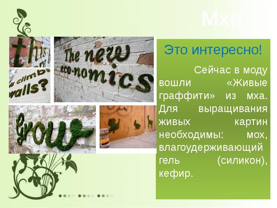 Мхи Это интересно! Сейчас в моду вошли «Живые граффити» из мха. Для выращиван...