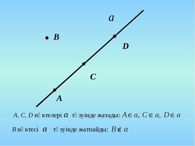 В А C D А, С, D нүктелері түзуінде жатады: В нүктесі түзуінде жатпайды: