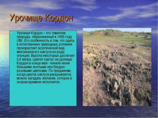 Урочище Кордон Урочище Кордон – это памятник природы, образованный в 1995 год