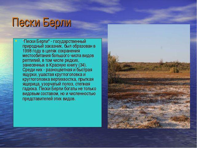 """Пески Берли """"Пески Берли"""" - государственный природный заказник, был образован..."""