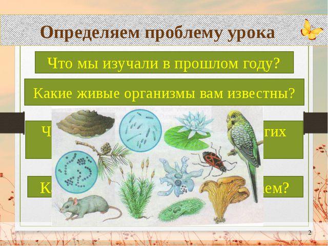 Определяем проблему урока Что мы изучали в прошлом году? Какие живые организ...