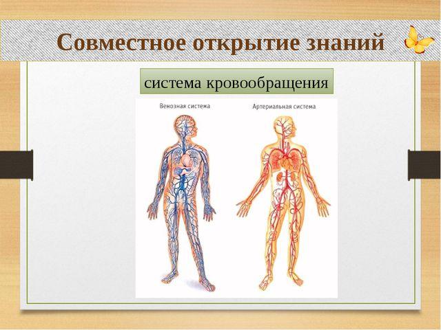 Совместное открытие знаний система кровообращения