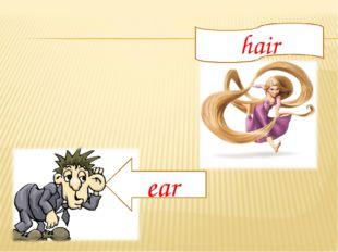 hair ear