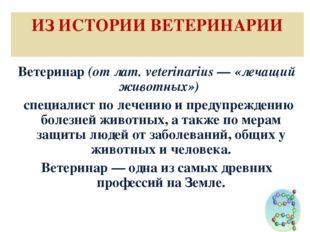ИЗ ИСТОРИИ ВЕТЕРИНАРИИ Ветеринар (от лат. veterinarius — «лечащий животных»)