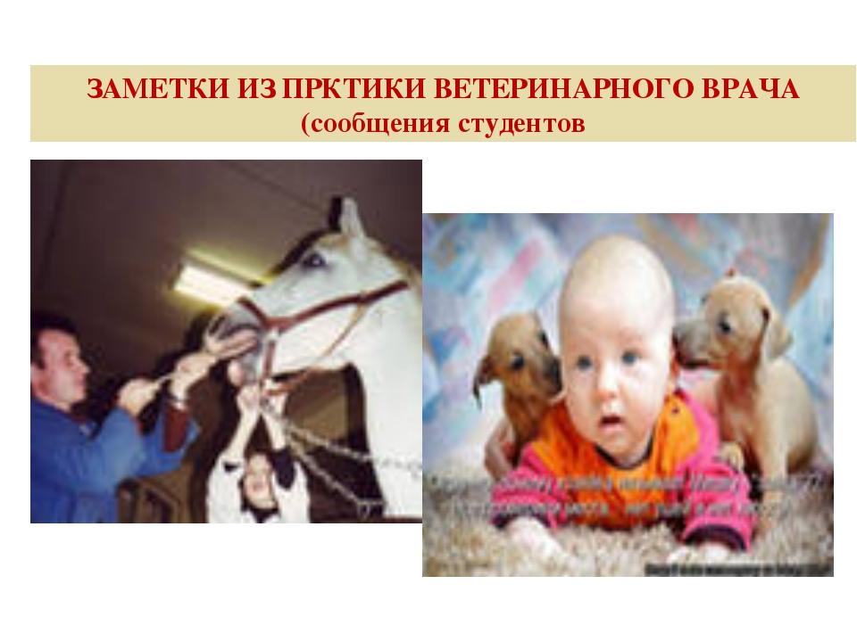 ЗАМЕТКИ ИЗ ПРКТИКИ ВЕТЕРИНАРНОГО ВРАЧА (сообщения студентов