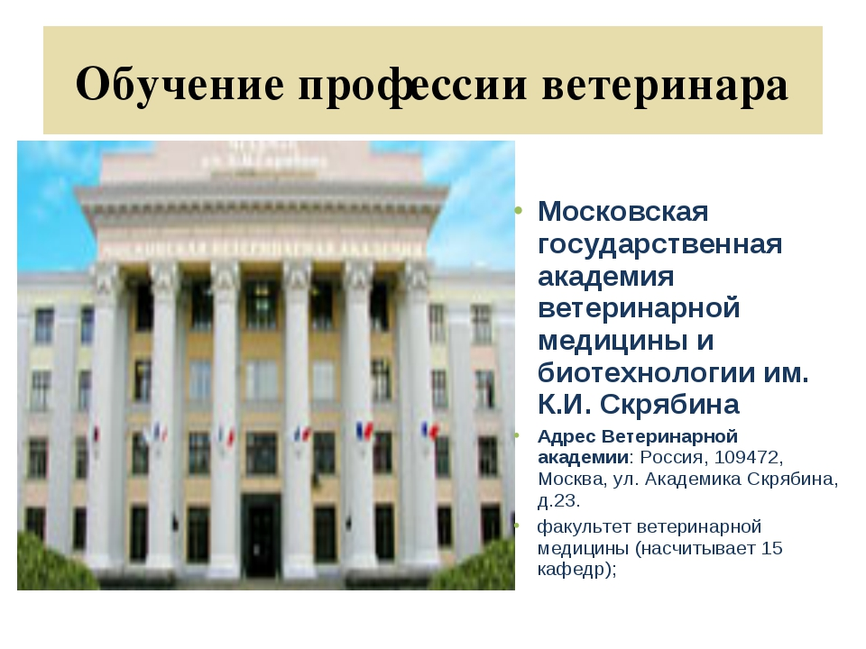 Обучение профессии ветеринара Московская государственная академия ветеринарно...