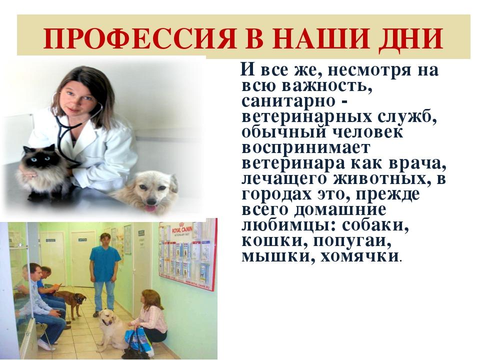 ПРОФЕССИЯ В НАШИ ДНИ И все же, несмотря на всю важность, санитарно - ветерина...