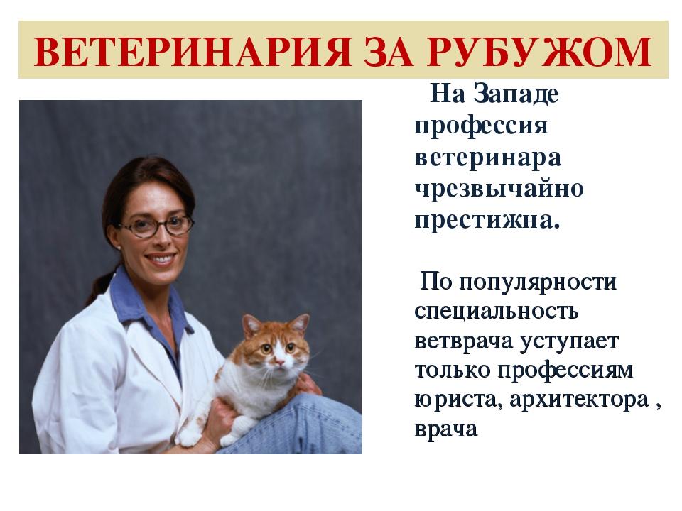 ВЕТЕРИНАРИЯ ЗА РУБУЖОМ На Западе профессия ветеринара чрезвычайно престижна....