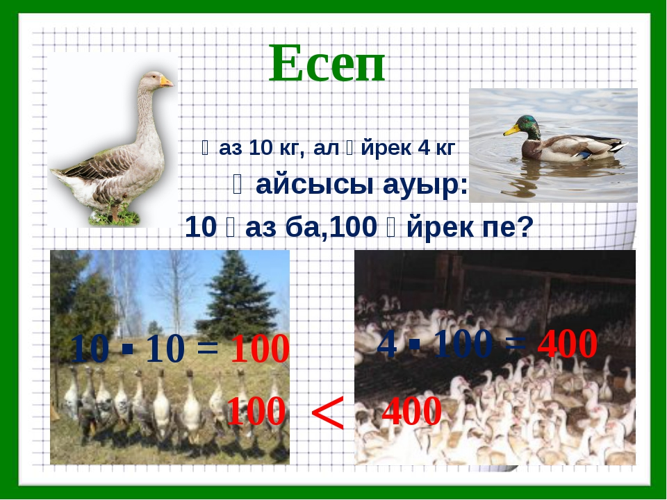 Есеп Қайсысы ауыр: 10 қаз ба,100 үйрек пе? Қаз 10 кг, ал үйрек 4 кг 10 ▪ 10 =...