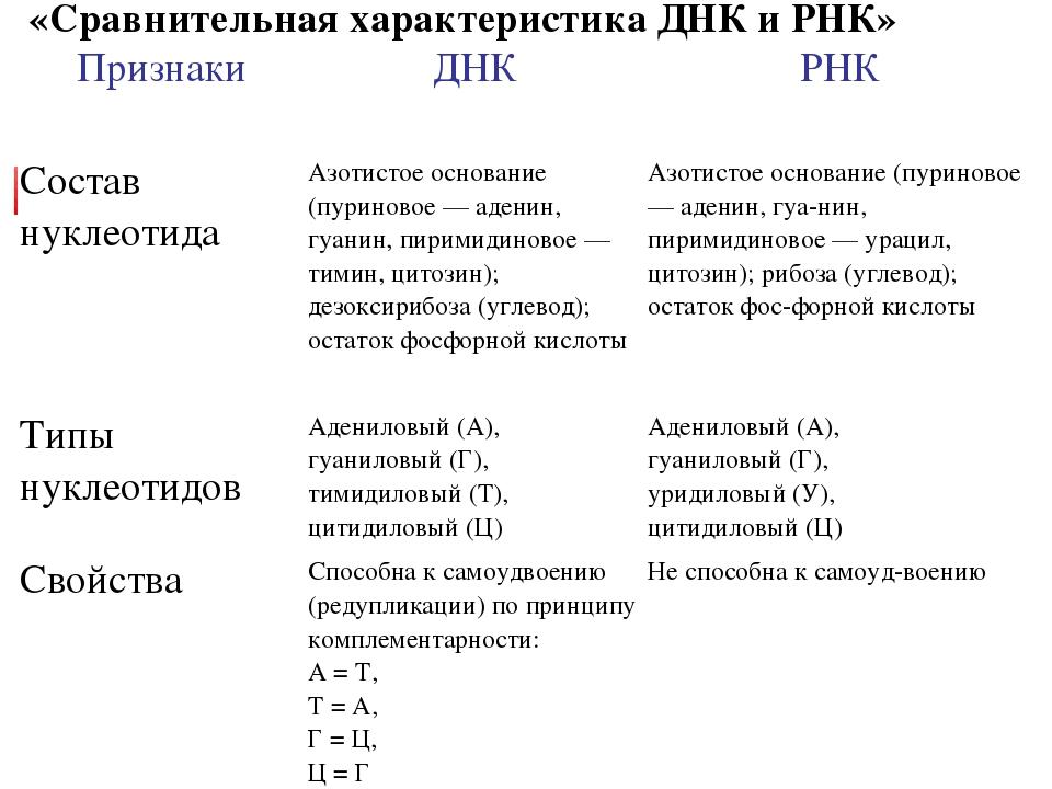 «Сравнительная характеристика ДНК и РНК» ПризнакиДНКРНК  Состав нуклеотида...