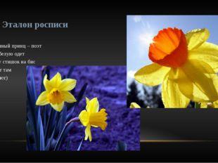 Загадка    Он цветочный принц – поэт В шляпу белую одет Про весну стишок н