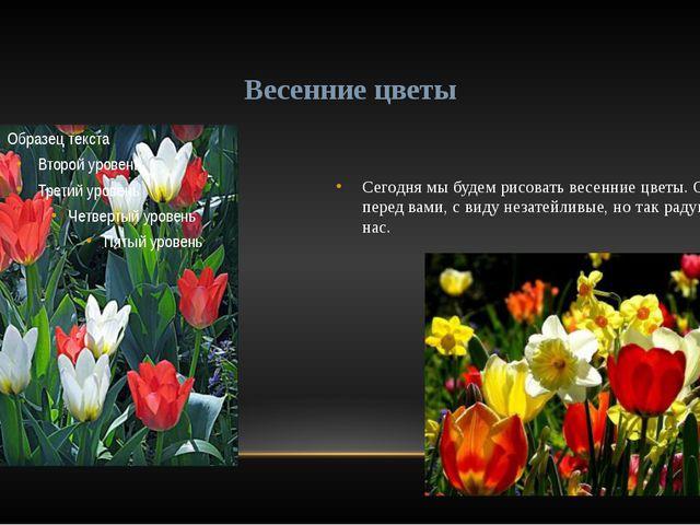Сегодня мы будем рисовать весенние цветы. Они перед вами, с виду незатейливые...