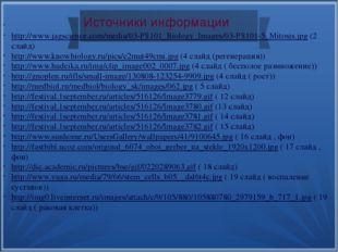 Источники информации http://www.jagscience.com/media/03-PS101_Biology_Images