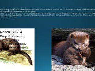 Численность: Общая численность вида по последним данным оценивается в 34-42 т
