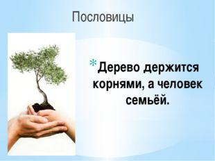 Дерево держится корнями, а человек семьёй. Пословицы