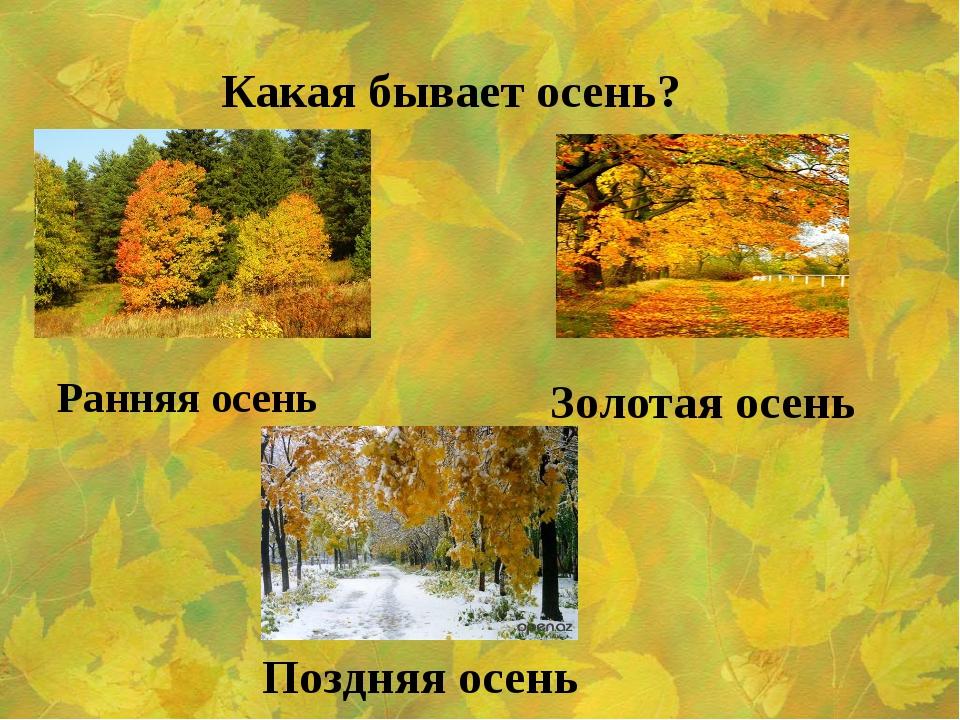 Какая бывает осень? Ранняя осень Золотая осень Поздняя осень