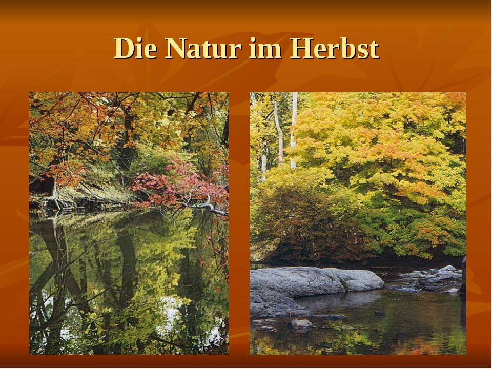 Die Natur im Herbst