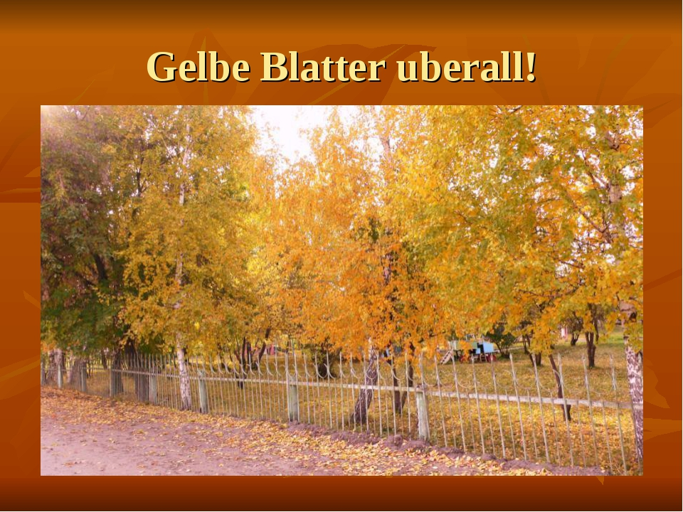 Gelbe Blatter uberall!