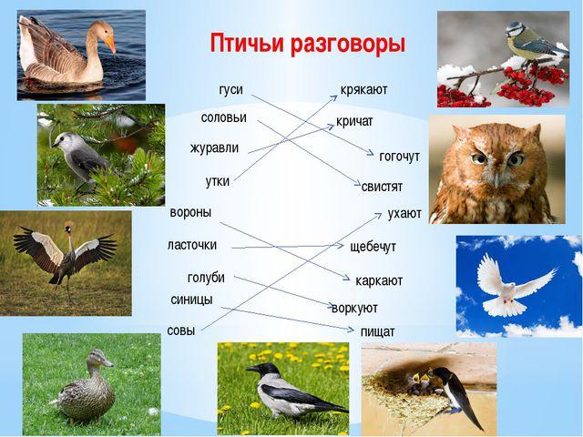 Птичьи разговоры гуси соловьи журавли крякают кричат гогочут утки свистят вор...