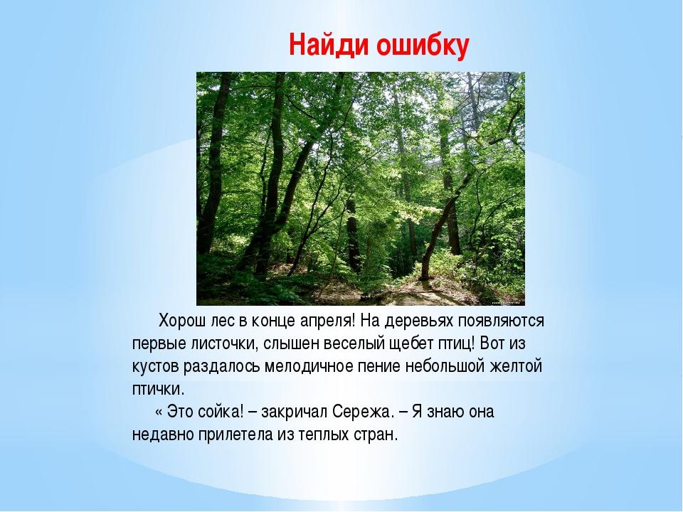 Найди ошибку Хорош лес в конце апреля! На деревьях появляются первые листочки...