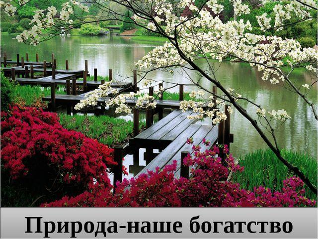 Природа-наше богатство