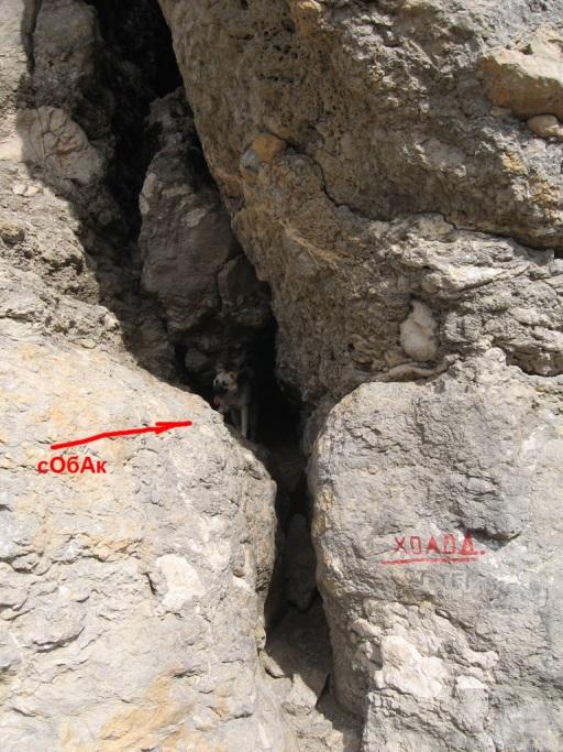 http://alp.org.ua/wp-content/uploads/2012/03/031.jpg
