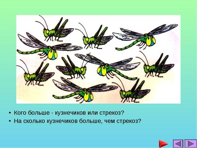 Кого больше - кузнечиков или стрекоз? На сколько кузнечиков больше, чем стрек...