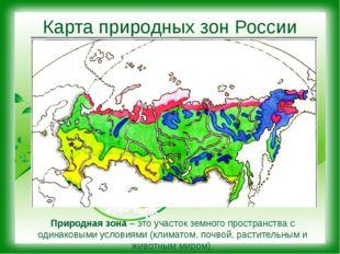 Карта природных зон России Природная зона – это участок земного пространства