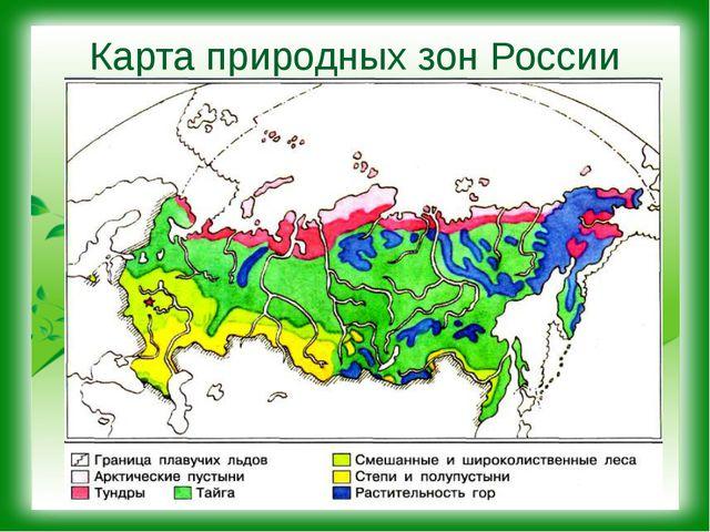 Карта природных зон России