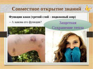 Совместное открытие знаний Функции кожи (третий слой – подкожный жир) Защитн