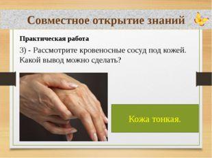 Совместное открытие знаний Практическая работа 3) - Рассмотрите кровеносные