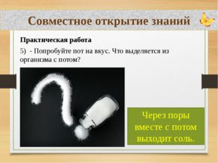 Совместное открытие знаний Практическая работа 5) - Попробуйте пот на вкус.