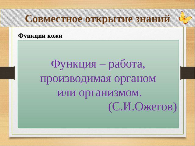 Совместное открытие знаний Функции кожи Функция – работа, производимая орган...