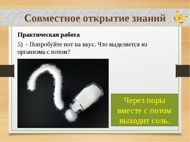 Совместное открытие знаний Практическая работа 5) - Попробуйте пот на вкус....