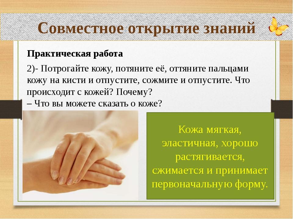 Совместное открытие знаний Практическая работа 2)- Потрогайте кожу, потяните...