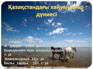 Құстардың 590 түрі Аңдардың 178 түрі Бауырымен жорғалаушылырдың 49 түрі Земно